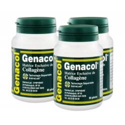 Lot de 3 Genacol  Synphonat 90 gélules