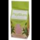 Psyllium 300 G Bio