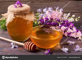 Dégustation de produits de la ruche